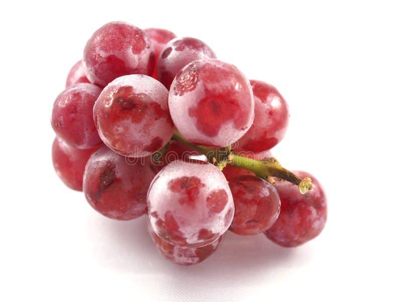 Frutta rossa dell'uva su bianco del fondo immagini stock libere da diritti