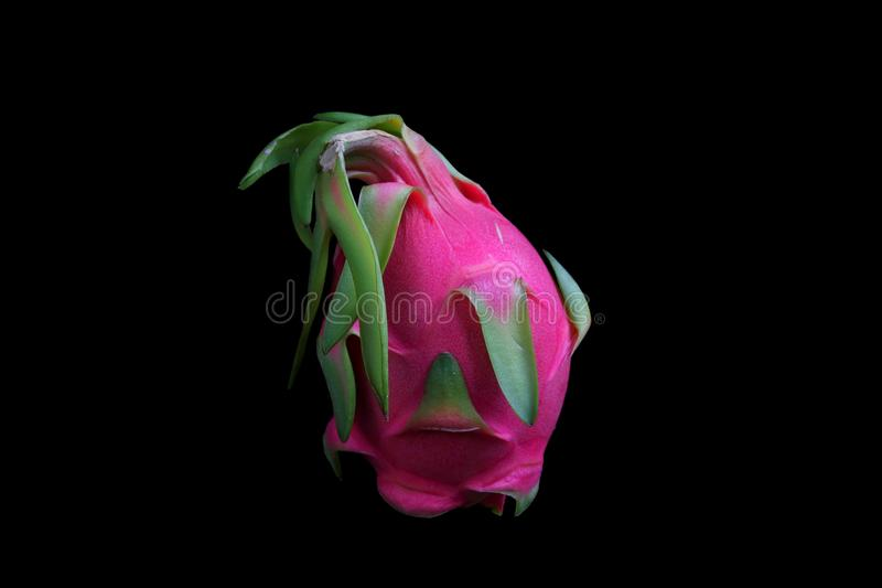 Frutta rossa rosata luminosa del drago fotografie stock