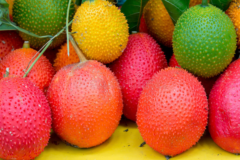 Frutta sana della frutta di Gac fotografia stock libera da diritti