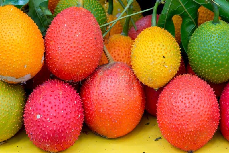 Frutta sana della frutta di Gac fotografia stock