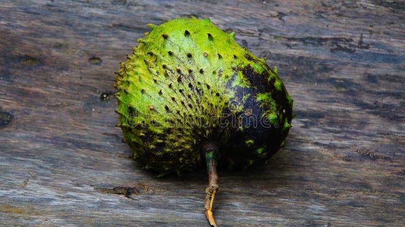 Frutta spinosa fotografia stock