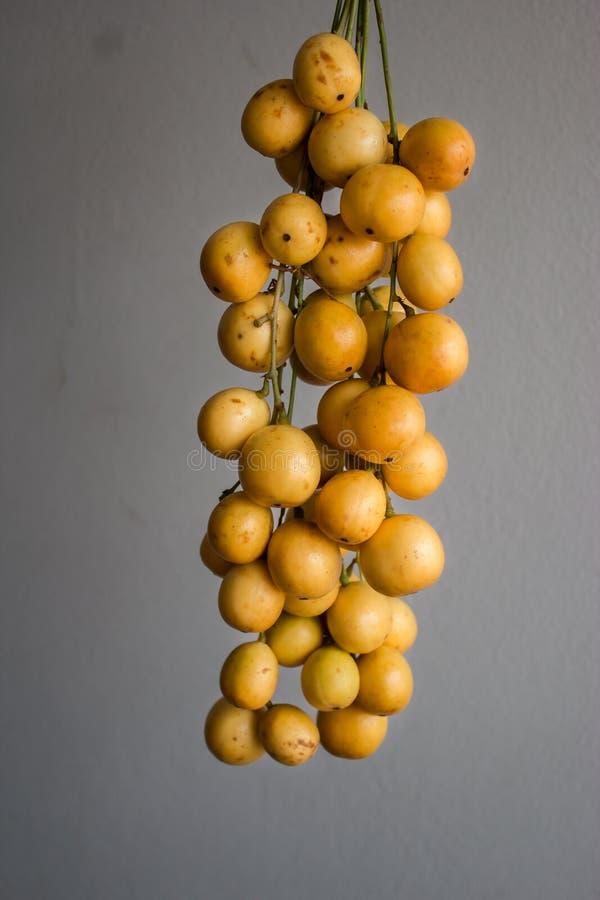 Frutta tailandese immagini stock