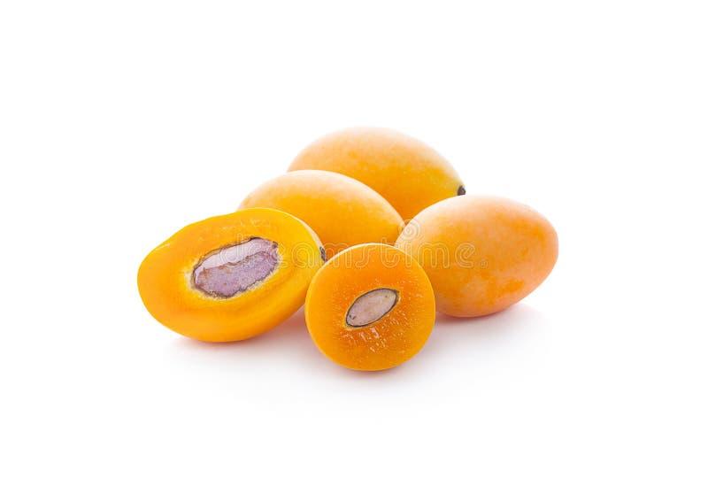 Frutta tailandese della prugna mariana dolce isolata su fondo bianco Mayongchid Maprang Marian Plum e Plum Mango, Tailandia fotografia stock