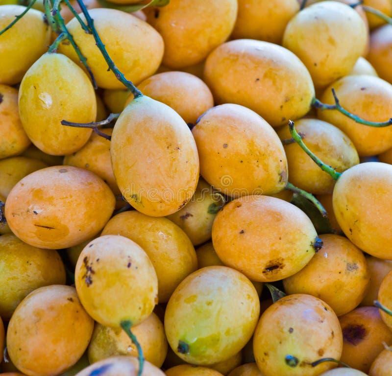 Frutta tailandese esotica. Maprang, prugna mariana, Gandaria, mango mariano, fotografia stock libera da diritti