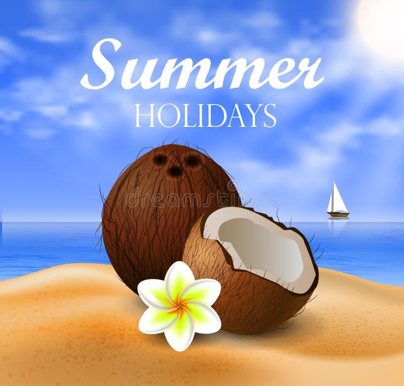 Frutta tropicale del dado della noce di cocco illustrazione di stock