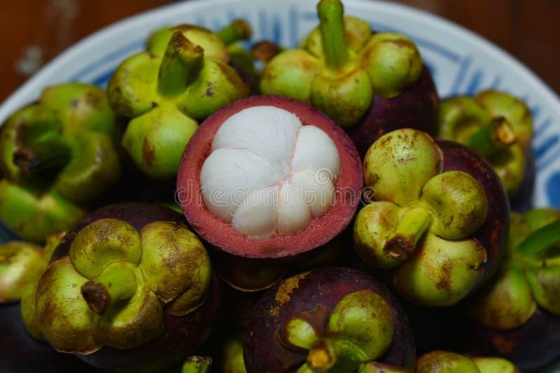Frutta tropicale del mangostano di garcinia mangostana immagini stock