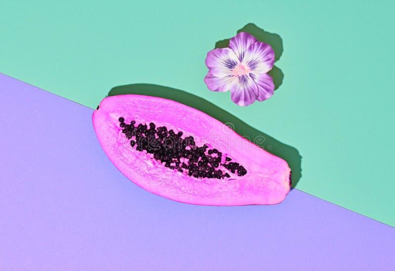 Frutta tropicale della papaia Arte minima Colore luminoso fotografia stock
