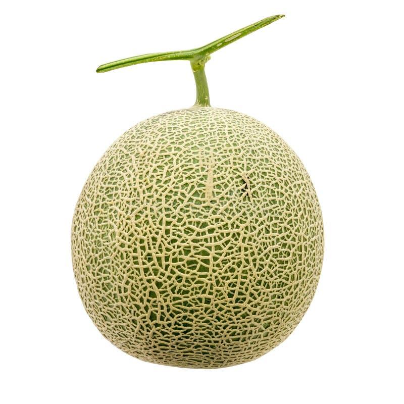 Frutta verde del melone immagini stock