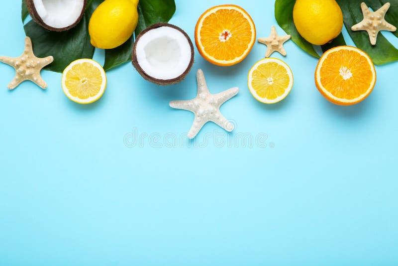 Frutti con le stelle marine e le foglie verdi immagine stock libera da diritti