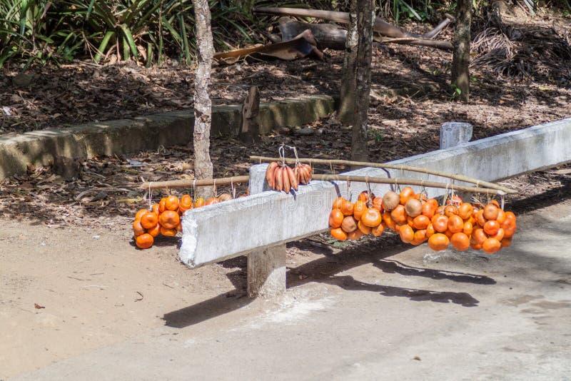 Frutti da vendere al passaggio di Farola della La fra Guantanamo e Baracoa, Cu fotografie stock libere da diritti