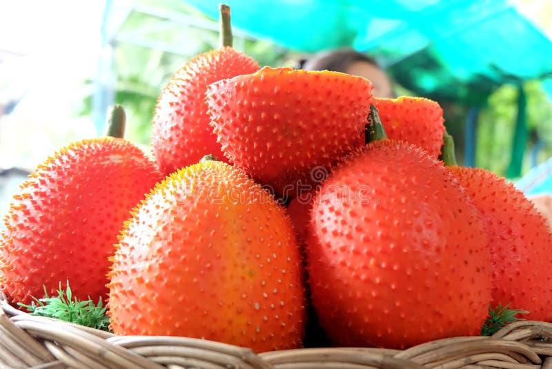 Frutti di Gac fotografie stock