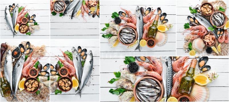 Frutti di mare del collage della foto immagini stock