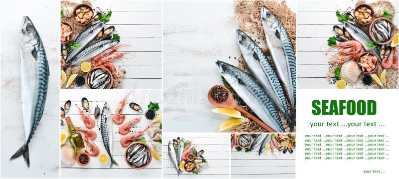 Frutti di mare del collage della foto fotografie stock
