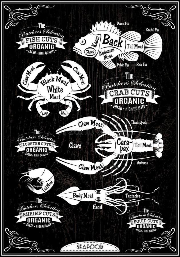 Frutti di mare delle carcasse del taglio del diagramma vettoriale illustrazione di stock