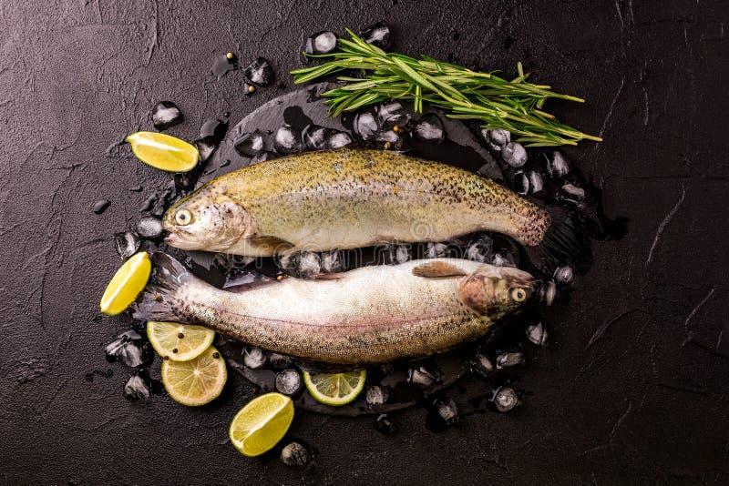 Frutti di mare Due trote iridee crude marinate con calce, rosmarino fotografia stock libera da diritti