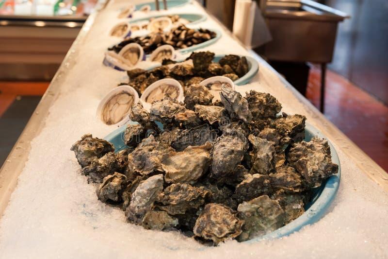 Frutti di mare freschi delle ostriche, di recente ostriche al porto di pesca fotografia stock libera da diritti
