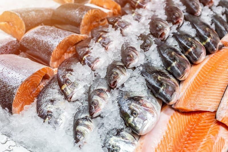 Frutti di mare freschi su ghiaccio tritato al mercato ittico Raccordo di color salmone crudo di dorado, dello spigola e sul conta fotografia stock