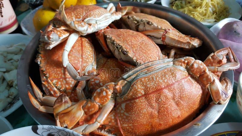 Frutti di mare - granchi nuotatori cucinati fotografia stock