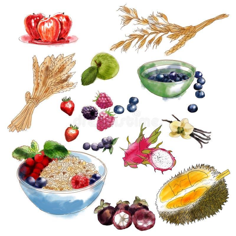 Frutti e bacche per i muesli royalty illustrazione gratis