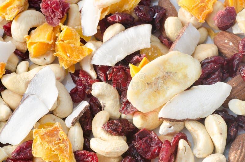 Frutti e dadi secchi tropicali immagini stock
