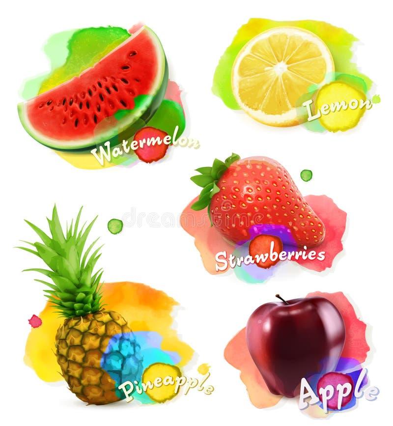 Frutti ed illustrazione delle bacche royalty illustrazione gratis