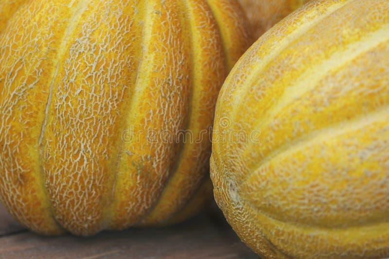 Frutti etiopici del primo piano giallo del melone grandi con gusto dolce fotografia stock