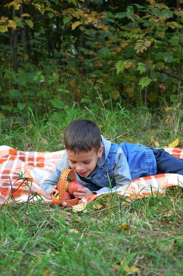 Frutti felici di cibo del bambino ragazzo sveglio felice del bambino che mangia una mela le bugie su un copriletto in autunno par immagini stock