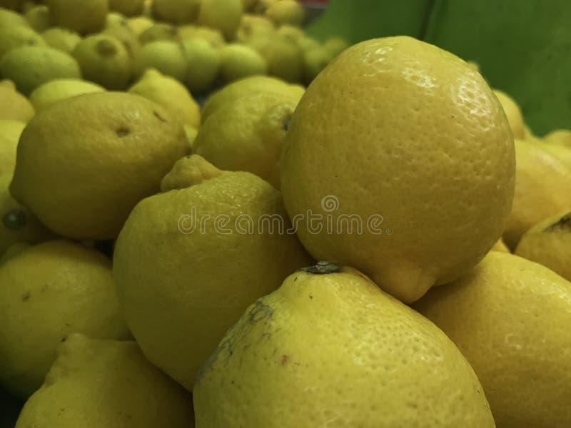 Frutti freschi del limone immagine stock libera da diritti