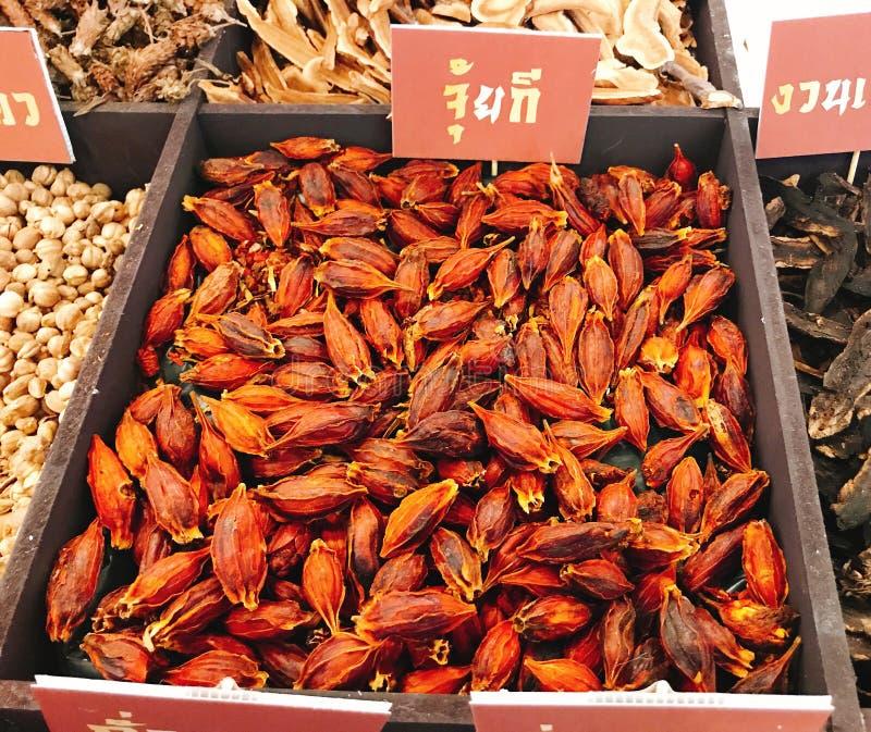 Frutti secchi dei jasminoides di gardenia o gardenia di Fructus o gelsomino di capo o shan o Chija di zi di Zhi fotografia stock libera da diritti