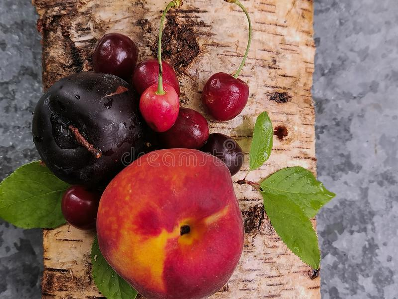 Frutti succosi: pesca, ciliegia e prugna sulla corteccia degli alberi di betulla in un giorno di estate Freschezza di estate immagini stock