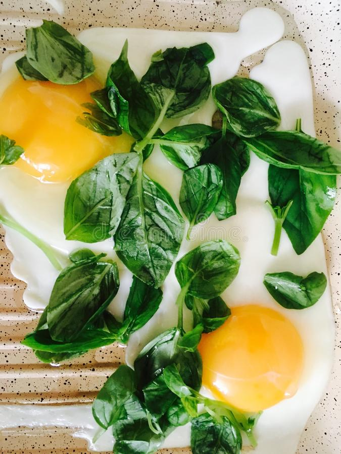 fry eggs with basil royalty free stock images