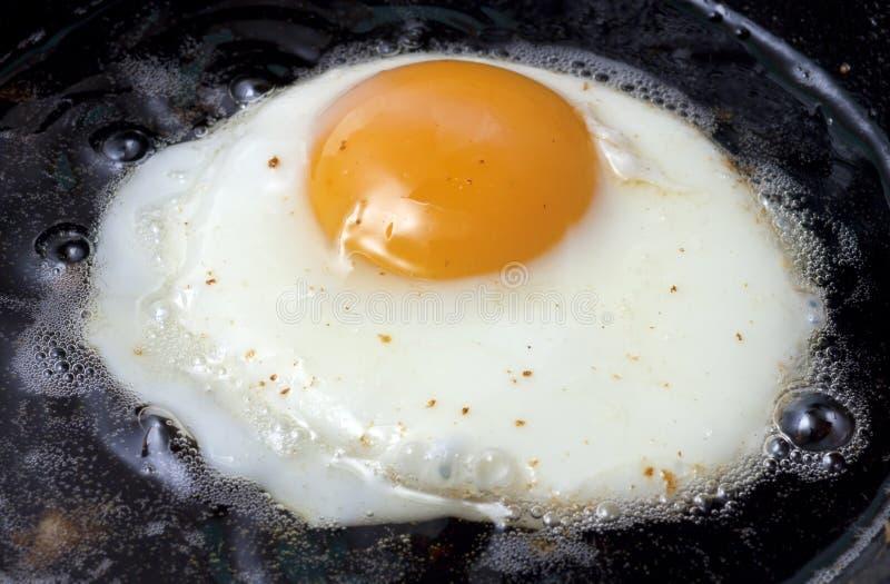 Frying egg royalty free stock photo