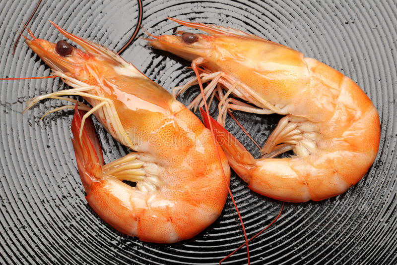 Download Frying shrimps stock photo. Image of gourmet, seafood - 33178950