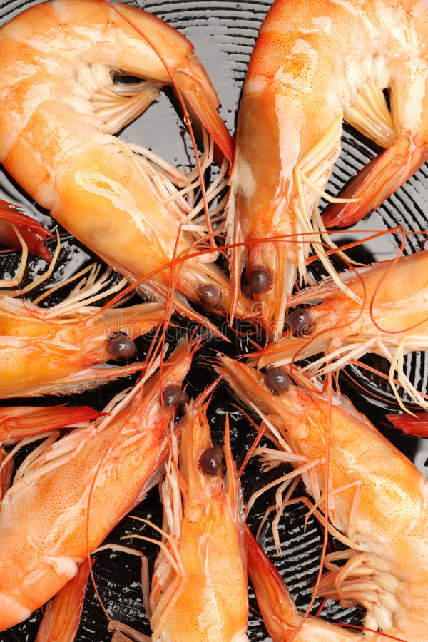 Download Frying shrimps stock image. Image of asian, food, roasted - 33179215