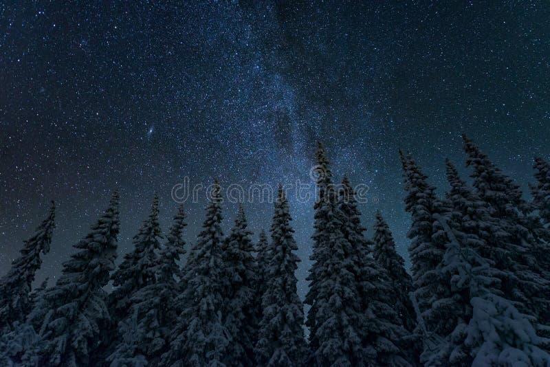 Frysa kallt vinternattlandskap arkivbilder