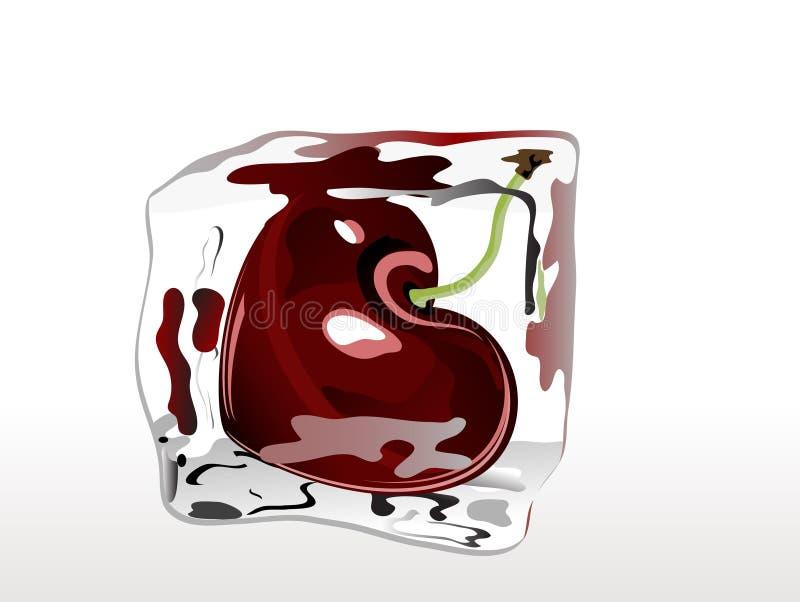 Fryst Cherry Arkivbilder