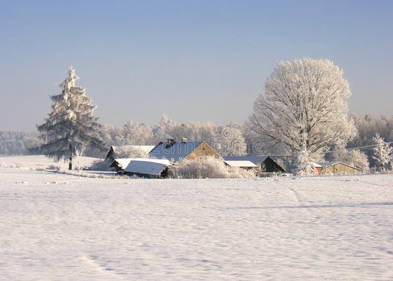 Download Fryst lantgård arkivfoto. Bild av vinter, skog, hoar, land - 504938