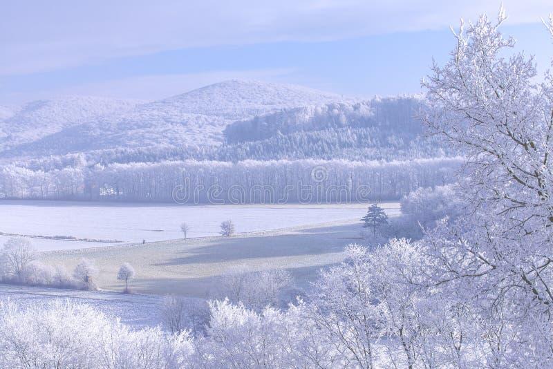 Fryst med naturen för landskap för snövinter den magiska arkivbild