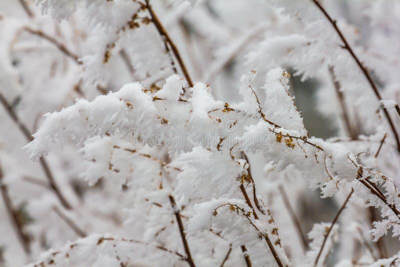 Fryst vinterlandskap i sichuan, Kina arkivbild