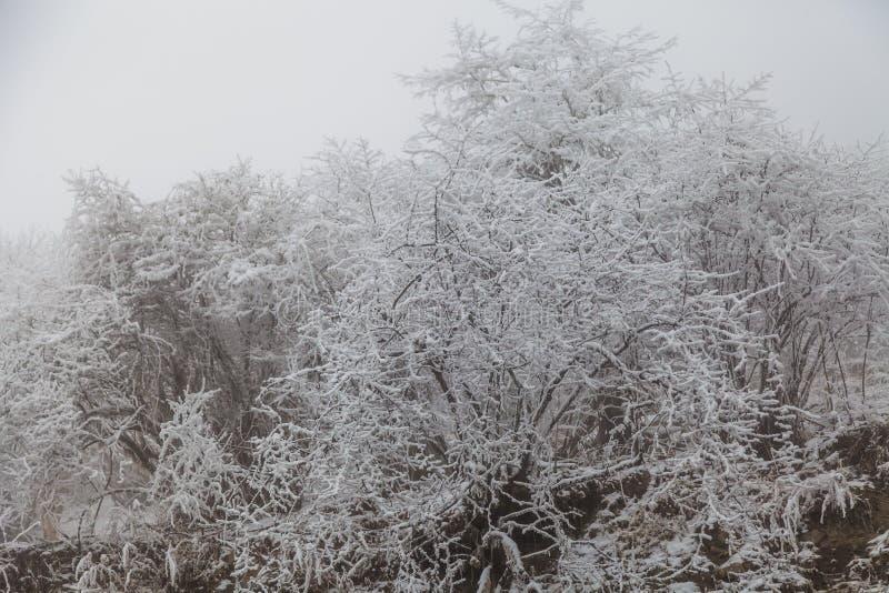 Fryst vinterlandskap i sichuan, Kina arkivfoton