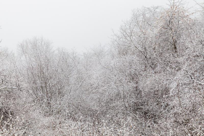 Fryst vinterlandskap i sichuan, Kina royaltyfria bilder