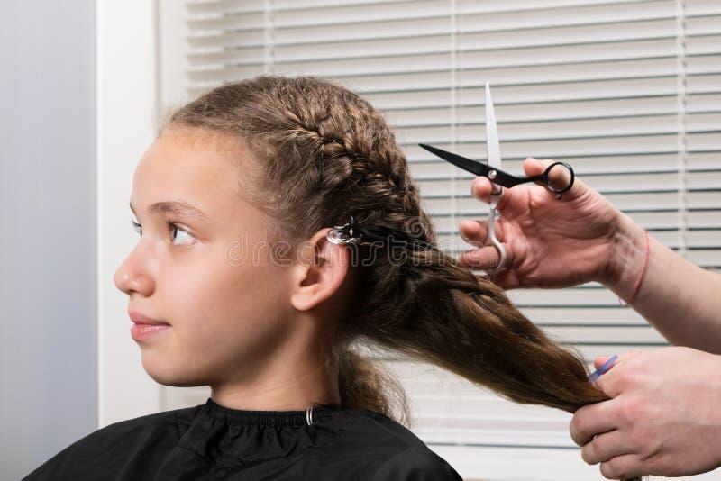 Fryzjerów strzyżenia kędzierzawy, niezdyscyplinowany włosy dziewczyna z nożycami, zdjęcie royalty free