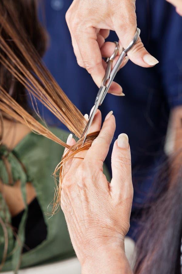 Fryzjera klienta Tnący Żeński włosy zdjęcia stock