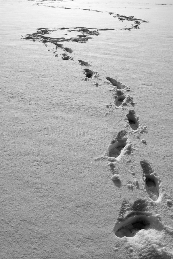Ft in neve fotografie stock libere da diritti