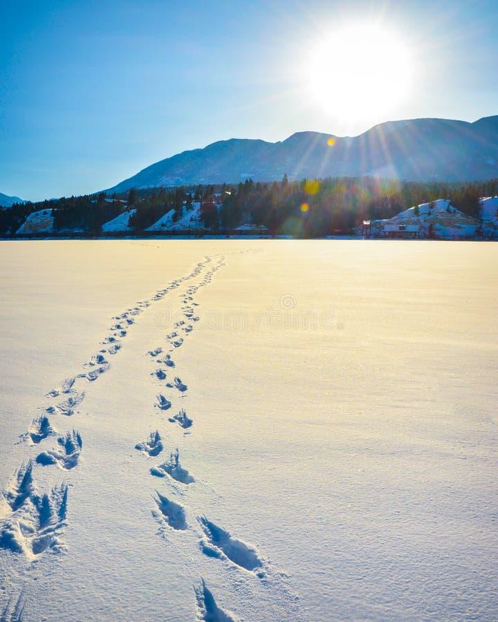 Fuß druckt im Schnee, Winterberglandschaft lizenzfreies stockfoto