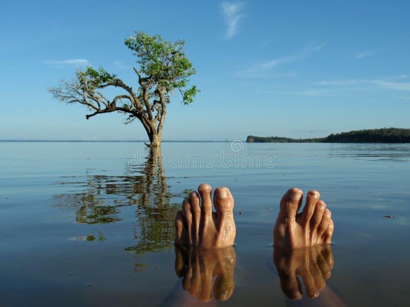 Fuß im Fluss lizenzfreies stockfoto