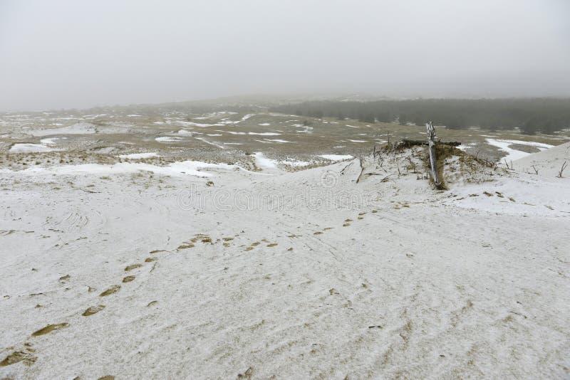 Fußabdrücke in Schnee- und Holzkreuzen lizenzfreie stockbilder