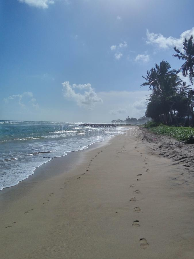 Fußabdrücke am Ufer des Indischen Ozeans lizenzfreie stockbilder