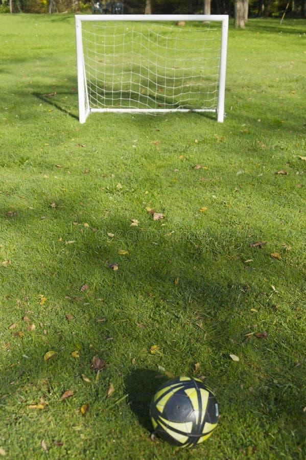 Fußball im Grün lizenzfreie stockbilder