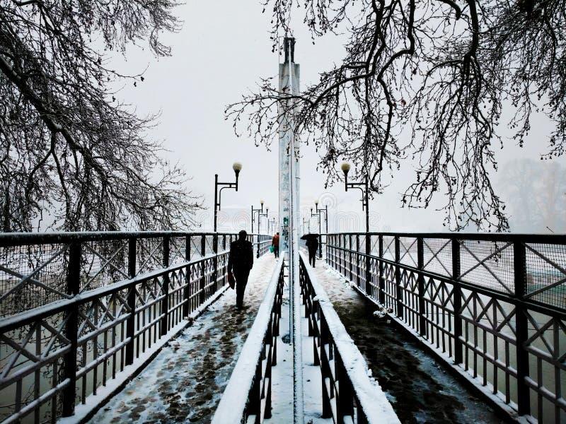 Fußbrücke am schneebedeckten Tag stockfoto